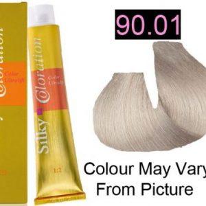 Silky 90.01/9A Permanent Hair Color 100ml - Silver