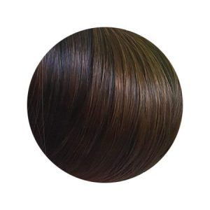 Seamless1 Ritzy Blend Piano Colour Ponytail 20 inch